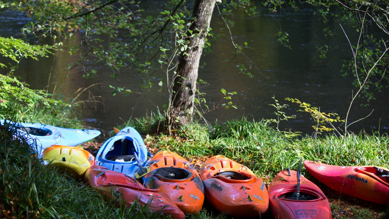 Kayaking on the River Teifi | © Iestyn Hughes